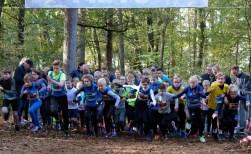 Hardlopen in het bos