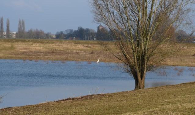 De Vonkerplas in Dreumel is een van de gebieden van vervuilde grond gestort wordt.