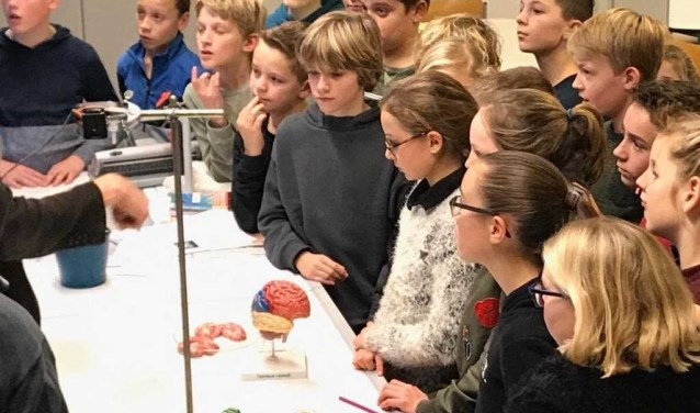 Basisschoolleerlingen volgen plusprogramma op Pax havo/vwo Presentaties Pax-excellentieprogramma 2018/2019