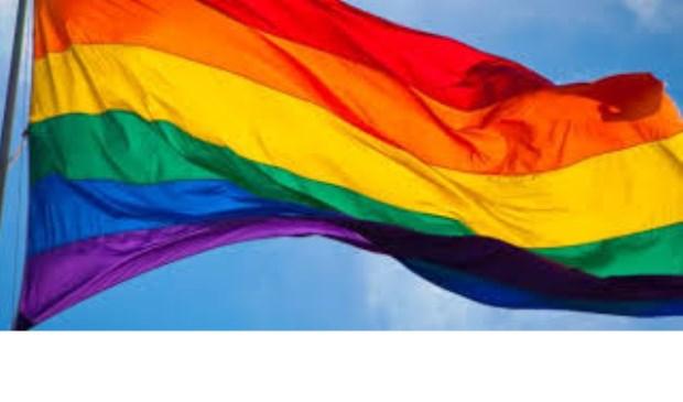 Regenboogvlag wordt gehesen in gemeente Geldrop-Mierlo    Fotonummer: 171357