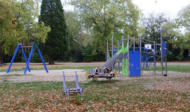 De speelvelden in Cranendonck verdienen een beter onderhoud, foto: Desiree Pennings