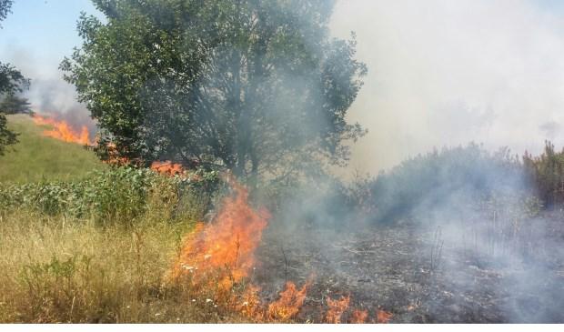 Er woedt een grote heidebrand aan de Fabrieksstraat in Budel.
