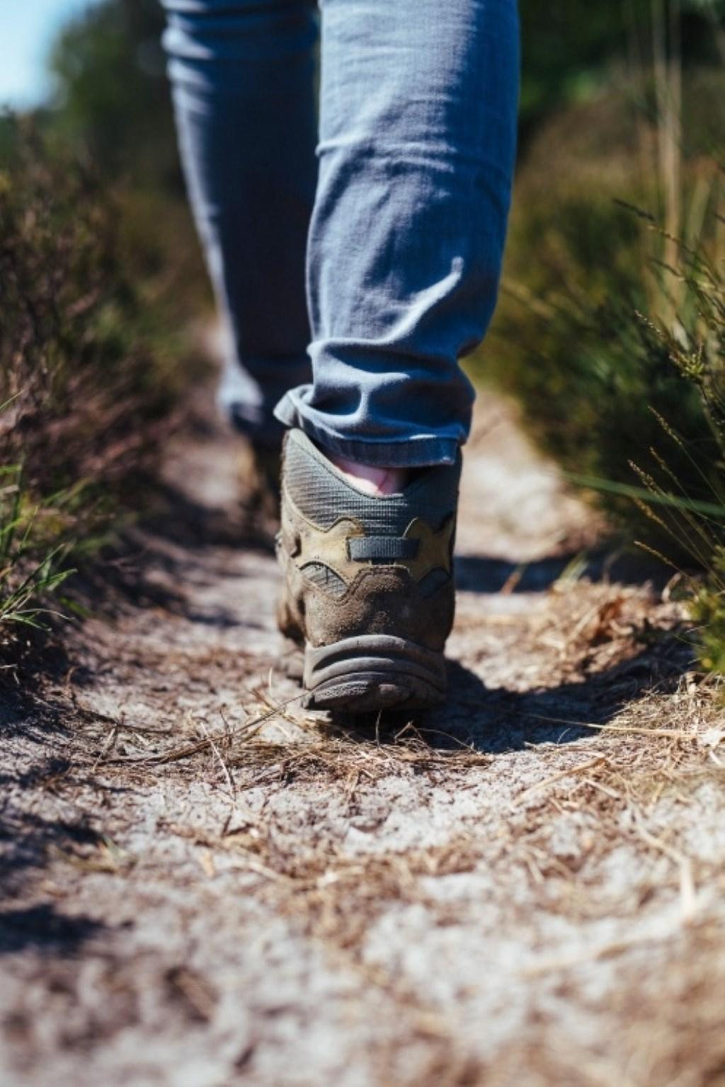 wandelen leenderbos  © grenskoerier