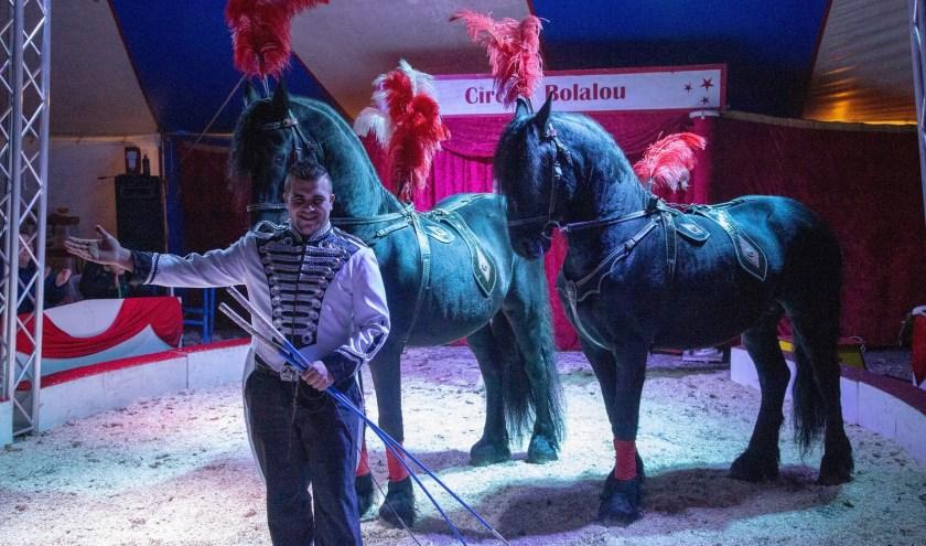 Friese paarden dressuur bij Circus Bolalou