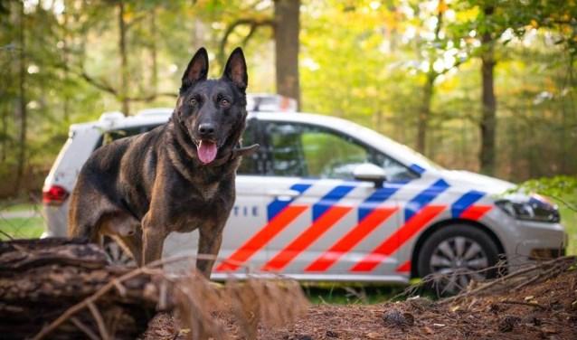 Archieffoto van de politiehond Biko.
