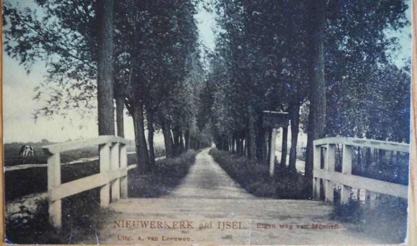 De Hitlandselaan - toen nog een particuliere weg - omstreeks 1920 op een ansichtkaart. De bomen staan er al ruim een halve eeuw niet meer.
