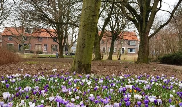 In de tuin komen zes kunstwerken die te maken hebben met de geschiedenis van Moordrecht.