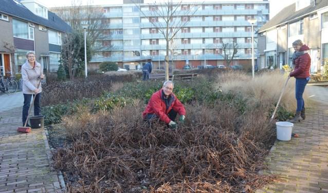 Het ontwerp voor de buurttuin - die er in februari nog wat troosteloos uitzag - is door de bewoners van de Busken Huetlaan zelf gemaakt.