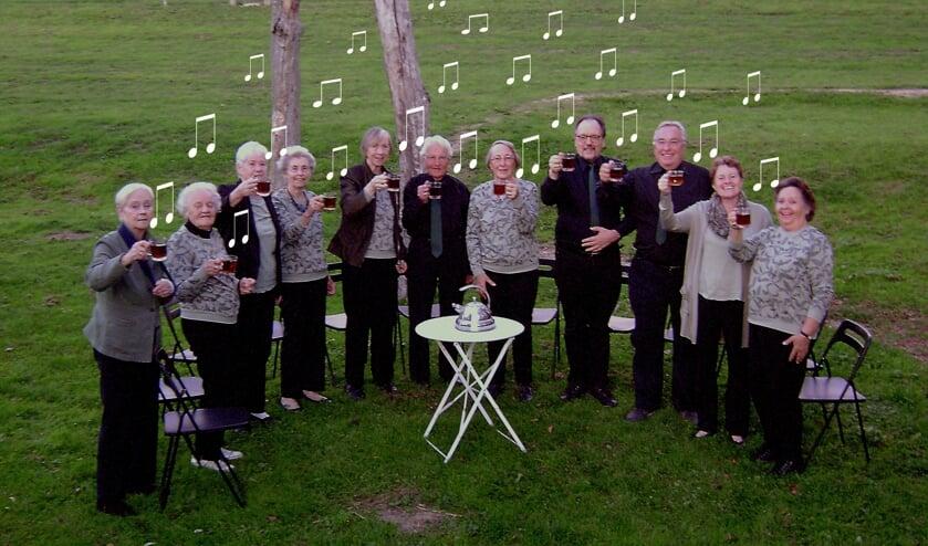 Gemengd koor Chantee nodigt mensen uit om een keer mee te komen zingen. (Foto:pr)