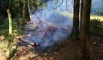 Kleine bosbrand in Boxtel