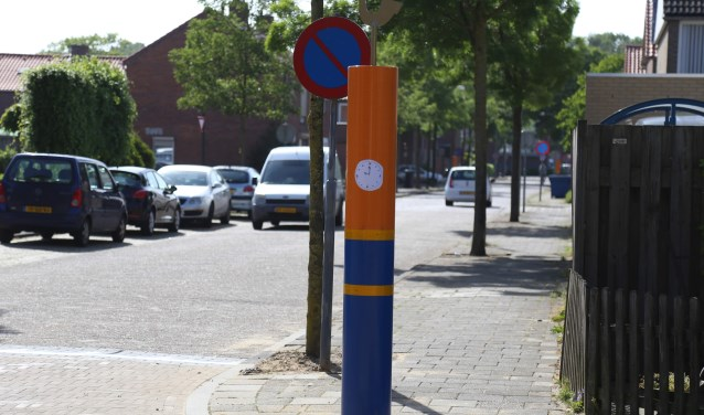 De gekleurde 'Magere Josjes' werden in mei geplaatst. (Foto: Sander van Kasteren)  | Fotonummer: b55571