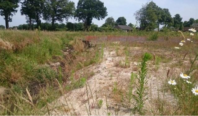 De Kleine Beerze in Oostelbeers is helemaal drooggevallen.   | Fotonummer: b4fae0