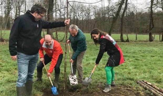 Boudewijn Tooren (l.) van de Herenboeren, wethouder Herman van Wanrooij (m.) en gedeputeerde Anne-Marie Spierings, bezig de aanplant van een boom.   | Fotonummer: 974195