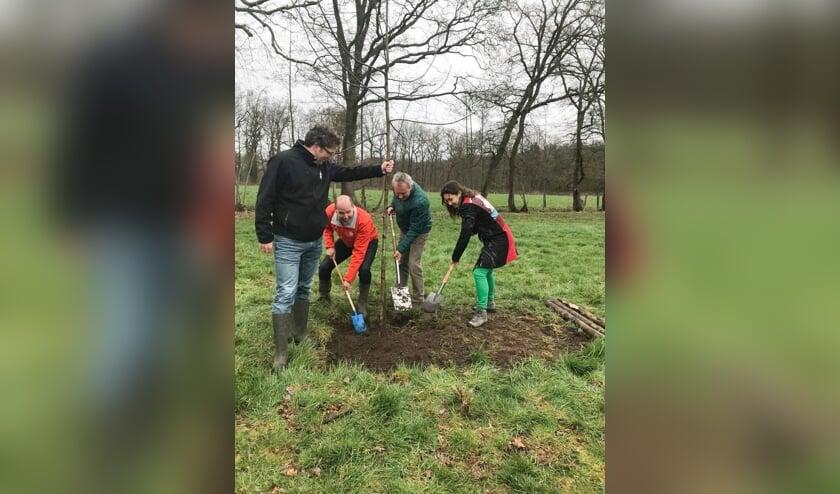 Boudewijn Tooren (l.) van de Herenboeren, wethouder Herman van Wanrooij (m.) en gedeputeerde Anne-Marie Spierings, bezig de aanplant van een boom.     Fotonummer: 974195