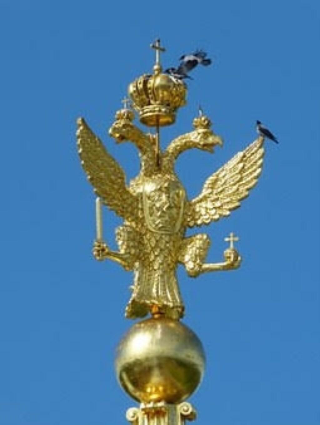 Dubbelkoppige adelaar in Sint-Petersburg Foto: Natuurgroep Gestel © MooiGestel