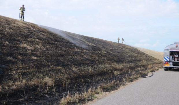 Over een lengte van meer dan honderd meter is de dijk verbrand.