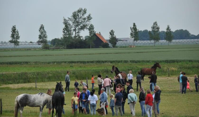 Bij de familie Breure bij Sint-Maartensdijk was er aandacht voor de paarden.