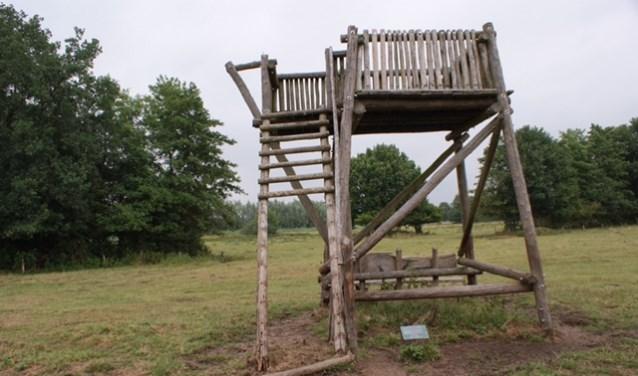 Hulp nodig om toren overleden vader op te knappen demooirooikrant