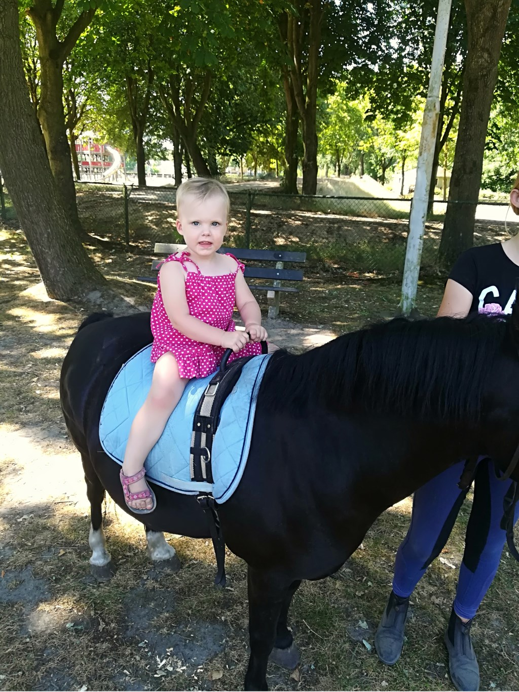 Niki Heijmans voelt zich prima op deze pony.  © MooiRooi