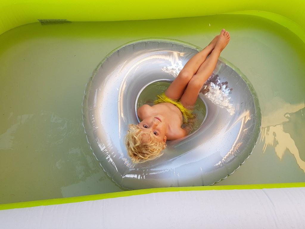 ram die heerlijk ligt te chillen in het zwembad in mooirooi. Foto: Martje Foolen Foto: Martje Foolen © MooiRooi