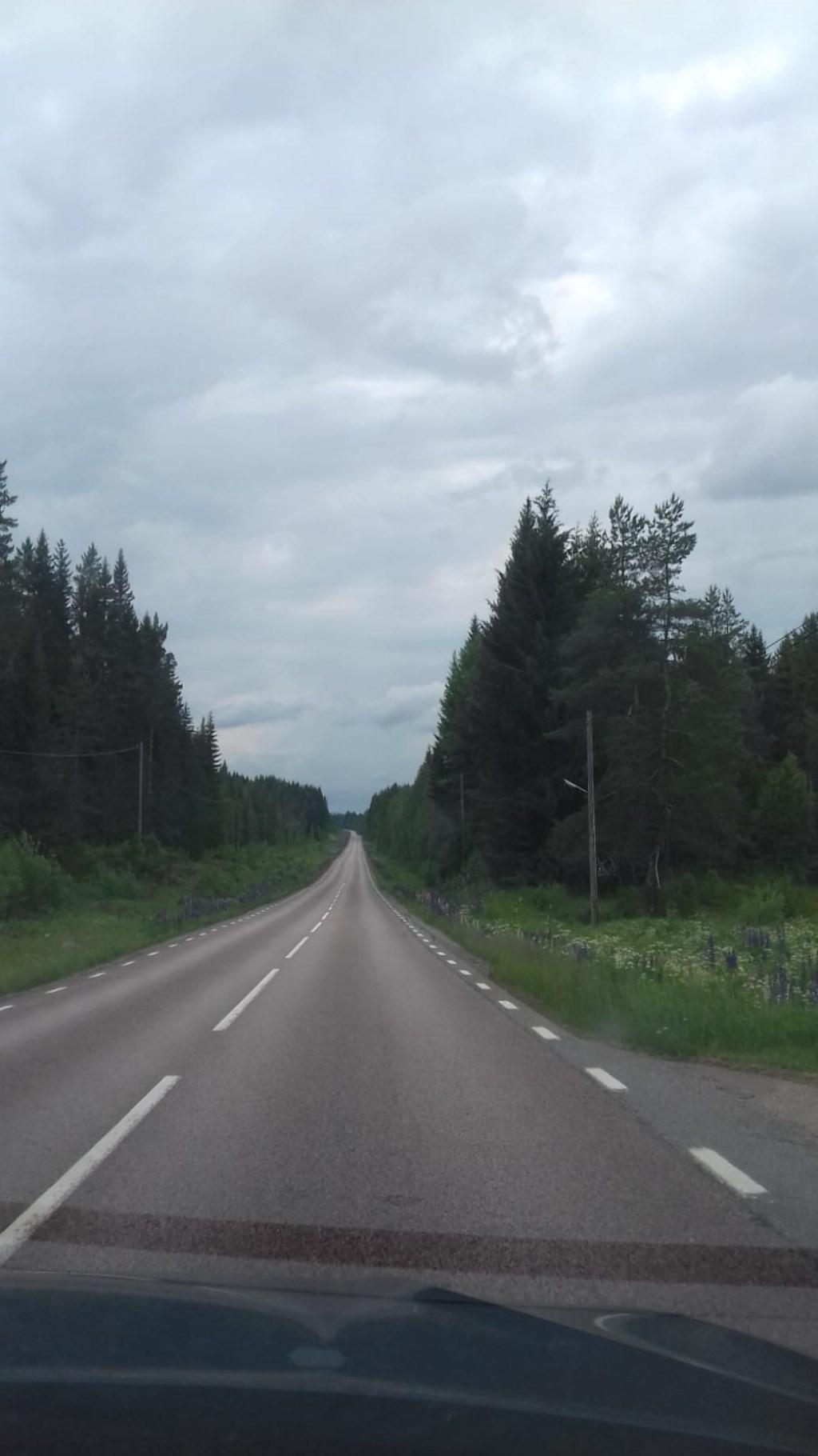 Eindeloze wegen in Zweden. Foto: Marion van Roosmalen.  © MooiRooi