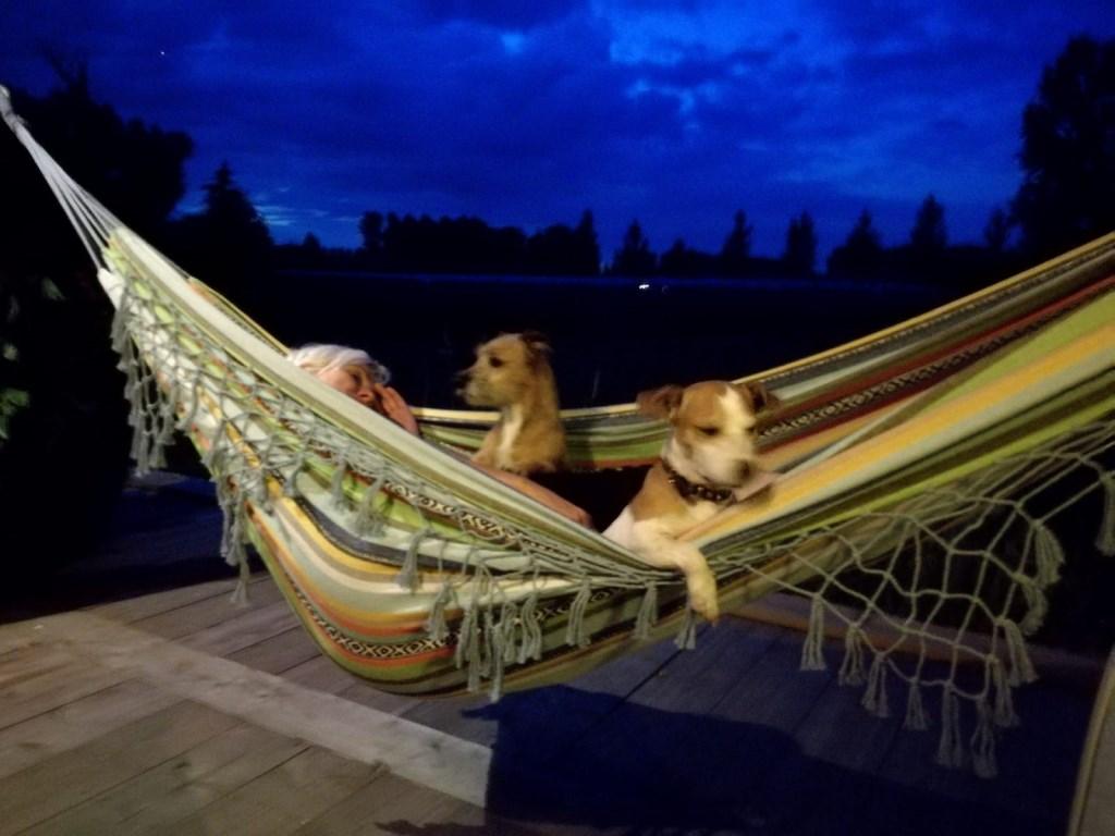 Herma, Lady en Guusje vieren vakantie in Olland.  © MooiRooi