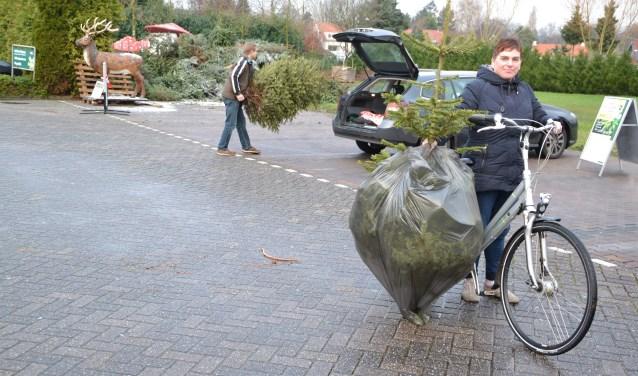 Wie de kerstboom duurzaam wil opruimen kan deze 5 januari inleveren.