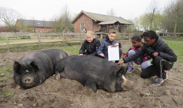 De buitenlesdag van basisschool De Wegwijzer was buitengewoon leerzaam.