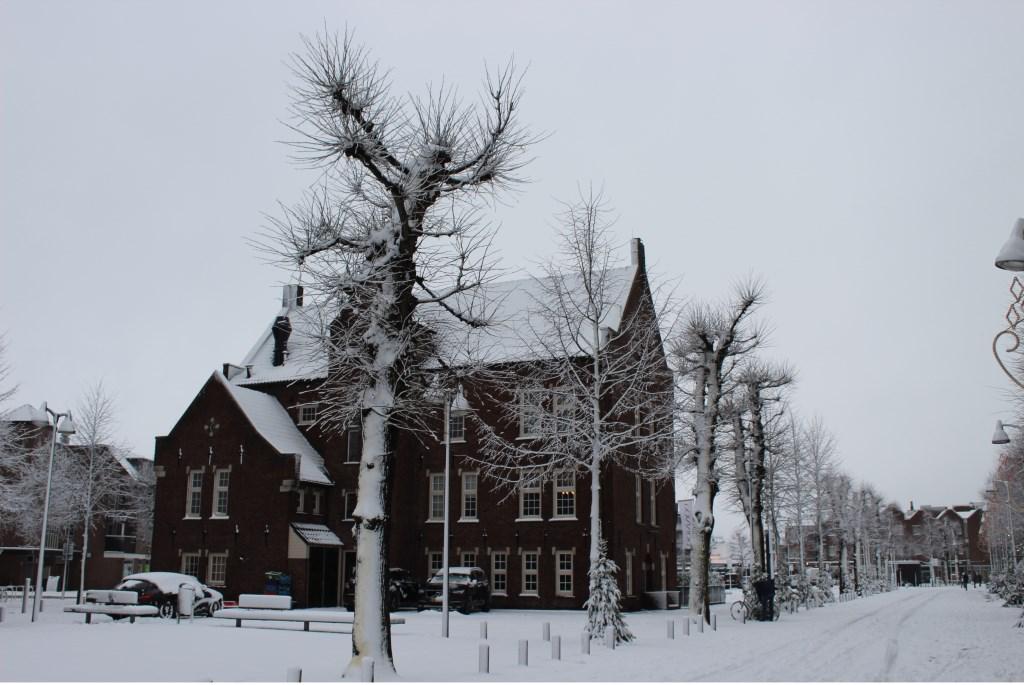 Astrid Windmeijer maakte een aantal mooie foto's in het dorp van Uden Foto: Astrid Windmeijer © Kliknieuws Uden
