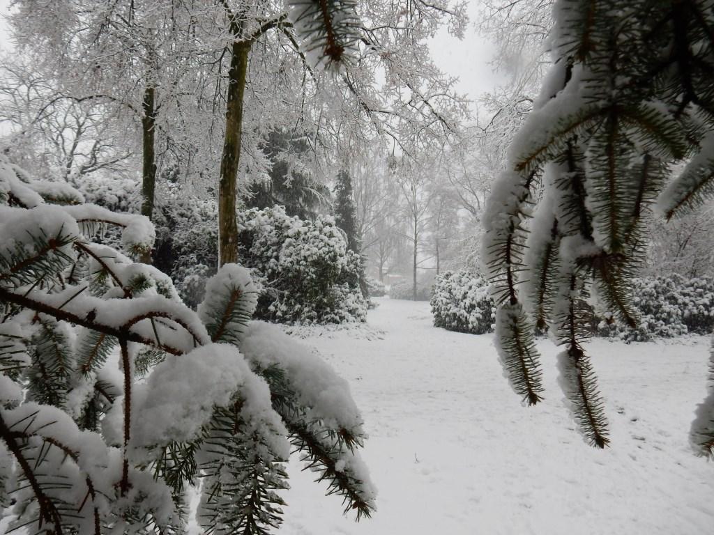 Geroge van Geem uit Uden maakte deze foto van het park bij de Breukrand in Uden Foto: George van Geem  © Kliknieuws Uden