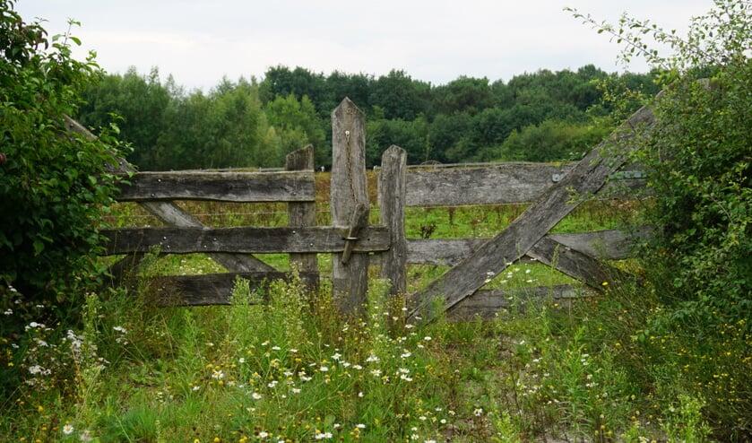 De Maashorst School opent haar poort op 28 augustus.