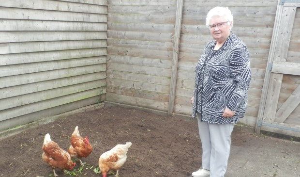 Corry Janssen kan haar kippen voortaan alle aandacht geven. Foto: Elly Meijnders