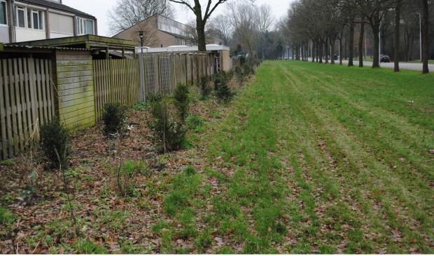 De aanleg van green junkies. (Foto: Art2Grow)  © Kliknieuws Oss