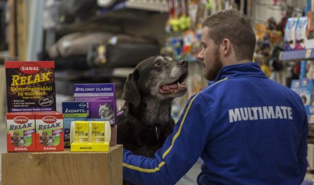 """Multimate Gennep heeft producten in het assortiment die het huisdier een minder stressvolle jaarwisseling kunnen bezorgen. """"Voor advies staan we klaar"""", zegt Ingrid Reinten. (foto: Fleur Reinten)"""