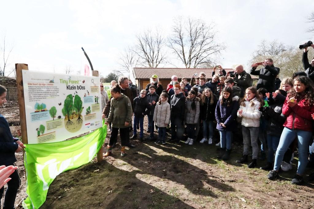 Basisschoolleerlingen planten eerste Tiny Forest in Oss. (Foto: Hans van der Poel) Fot © Kliknieuws Oss