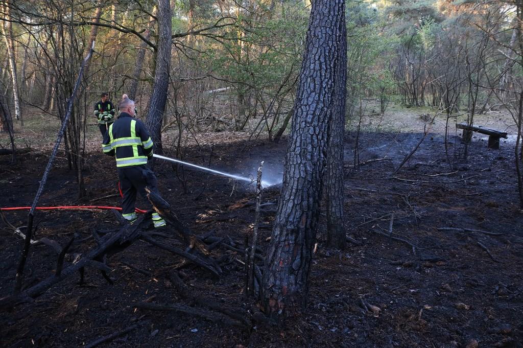 Flink stuk bos in brand in Geffense Bosjes. (Foto: Gabor Heeres / Foto Mallo)  © Kliknieuws Oss
