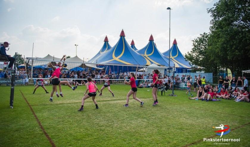 Drie dagen topvolleybal en vier dagen feest tijdens het Pinksertoernooi! (foto: Piet van Strijp)