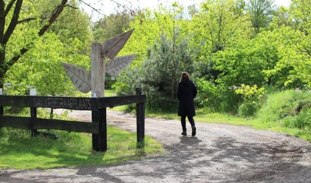 Natuurbegraafplaats Weverslo houdt een open dag; kom ook eens een kijkje nemen! (foto: Aileen van Tilburg)