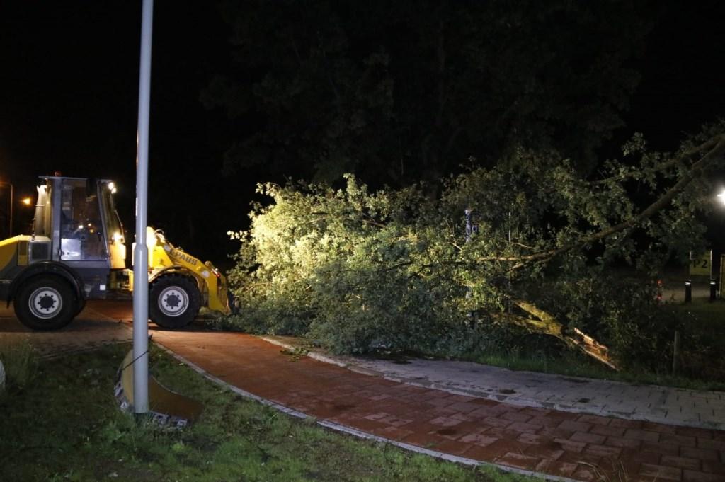 Op de Heijenseweg in Gennep is een boom afgebroken en helemaal over een inrit gevallen.  Foto: SK-Media © 112 Brabantnieuws