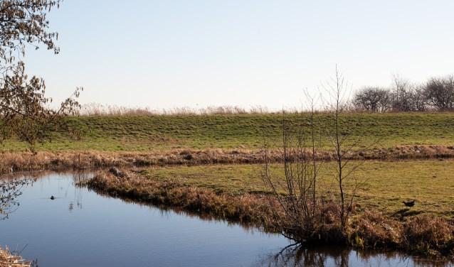 Bij de Prinsendijk is de bodemdaling van de polder Oukoop goed zichtbaar. Beeld: Bert Verver