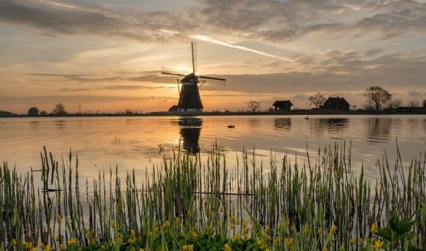 Foto: Martijn Roos
