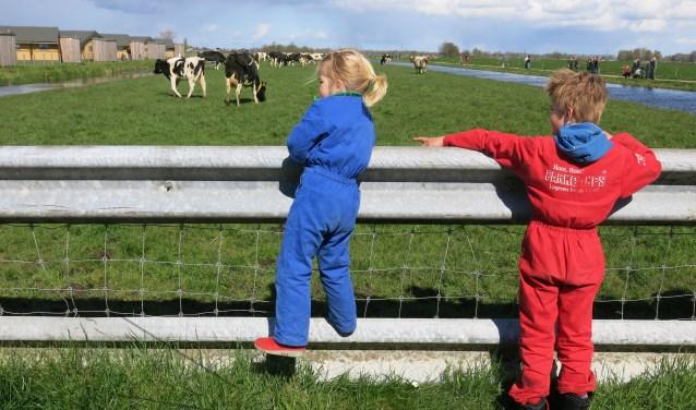 Bij boer Dirk ontdek je alles over het leven op de boerderij. (Foto: Sanne Luijben)