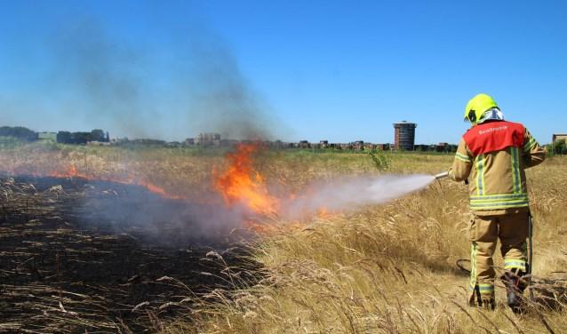 Er hebben meerdere natuurbranden gewoed in Lansingerland.