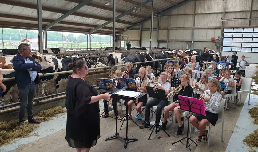 Door de regenachtige zaterdag moesten de kinderen uitwijken naar de koeienstal.