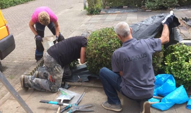 Vrijwilligers helpen weer de tuin winterklaar te maken.