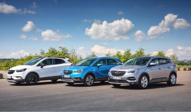 Opel X Family, 2018