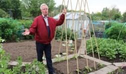 Peultjes, tuinbonen, klimbonen, aardappelen, aalbessen onder een net en op de achtergrond de trots van Koos van Gemeren, zijn koude kas.