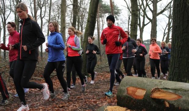 Hardlopen in het Gossinkbos tijdens een eerdere editie van de ABC-cursus. Foto: Jan Ruesink