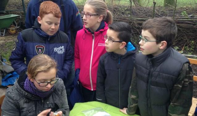 Ook jeugdleden van natuurgroep Kockengen gingen mee op excursie naar Vogelringstation De Haar. Het werd een bijzondere ervaring. Foto: Ben van der Horst