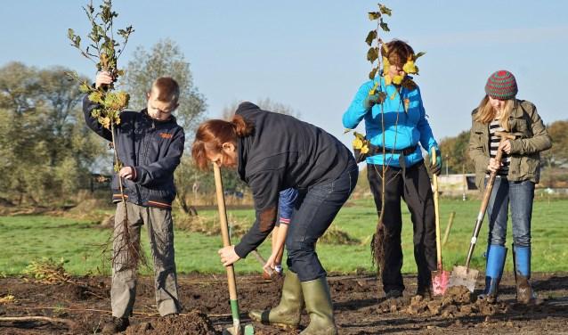 In Oss worden natuurliefhebbers aan het werk gezet bij 'Gat van den Dam', tussen Oss en Lithoijen. Daar gaan ze bijvoorbeeld knotwilgen knotten, takkenrillen maken, bomen vrijzetten, en houtopslag verwijderen.